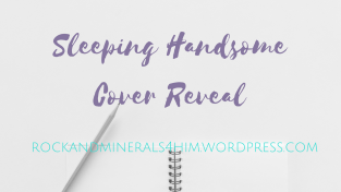 Sleeping Handsome Cover Reveal